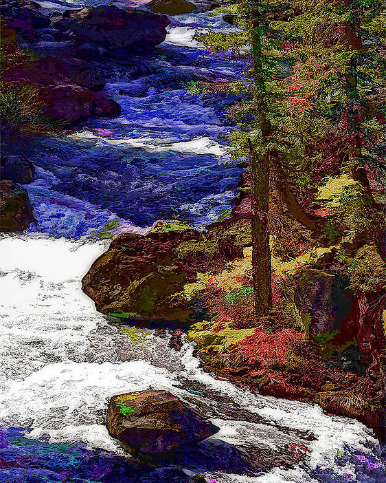 Nature Poster featuring the photograph Rushing River by Nancy Marie Ricketts