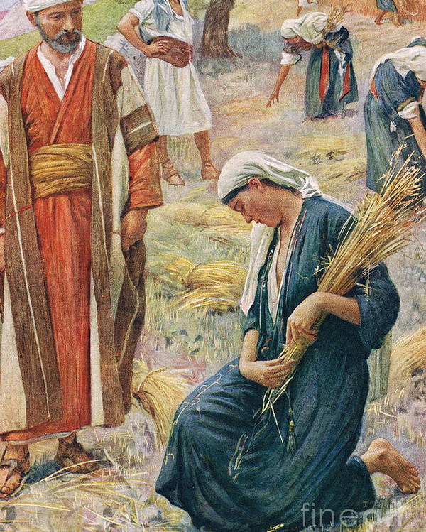 Book Of; Biblical; Boaz; Boaz's Field; Kneeling; Corn; Harvest; Harvesting; Reaping; Yield; Widow; Husband And Wife; Holy Land; Judea; Jew; Jewish; Corn Poster featuring the painting Ruth by Harold Copping