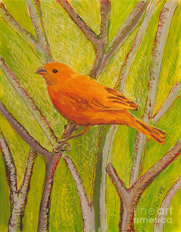 Hawaii Birds Poster featuring the painting Saffron Finch by Anna Skaradzinska