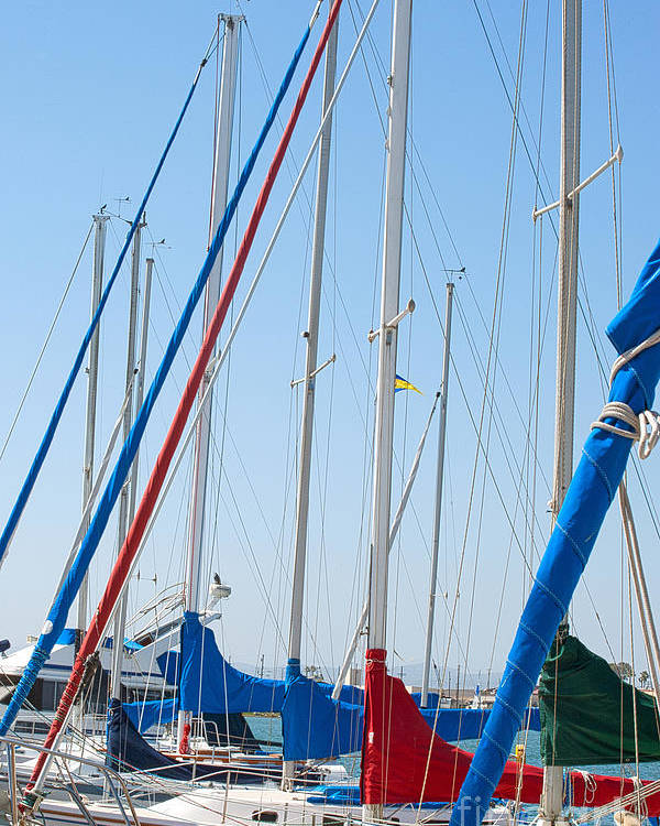 Sailing Poster featuring the photograph Sailboat Masts by Artist and Photographer Laura Wrede