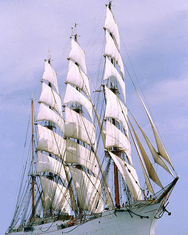 Boat; Outdoors; Outside; Sail; Sailing Ship; Sails; Ship; Vessel; Water; Waterway & Maritime Transport Poster featuring the photograph Sailing Ship by Anonymous