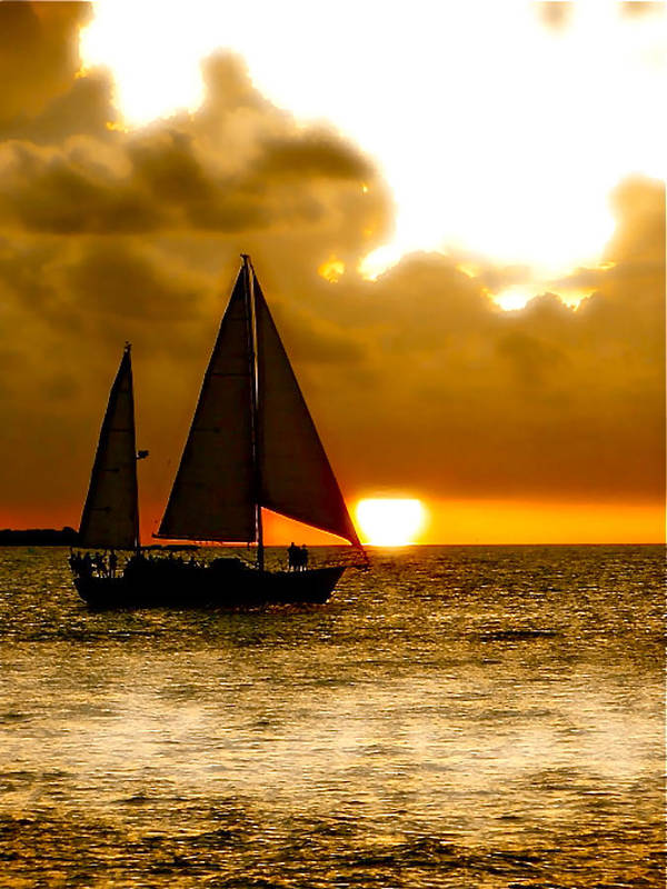 Key West Poster featuring the photograph Sailing The Keys by Iconic Images Art Gallery David Pucciarelli