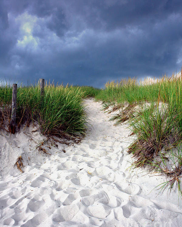 Beach Poster featuring the photograph Sand Dune Under Storm by Olivier Le Queinec