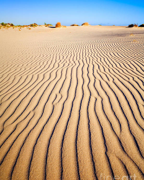 Sand Poster featuring the photograph Sand Dunes At Eucla by Colin and Linda McKie