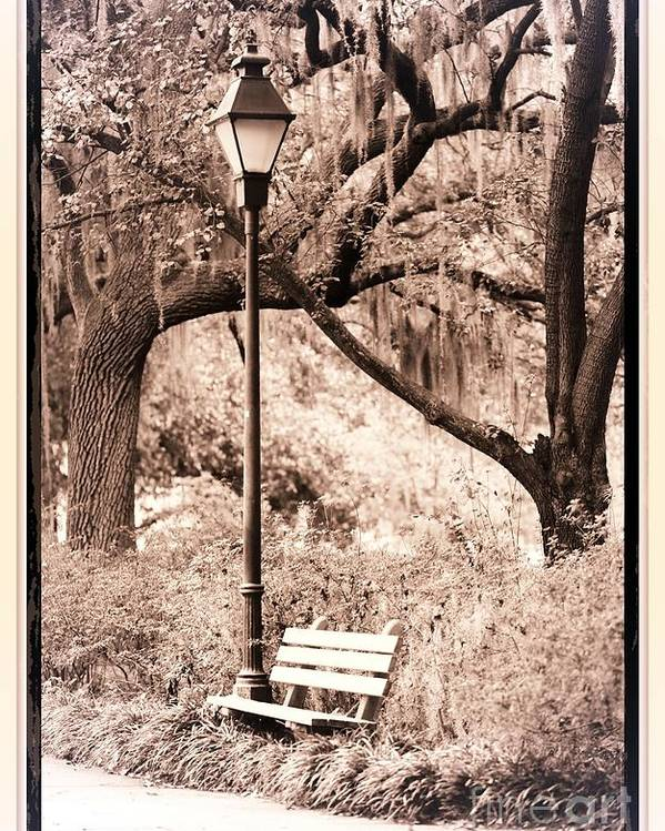 Bench Poster featuring the photograph Savannah Bench Sepia by Carol Groenen