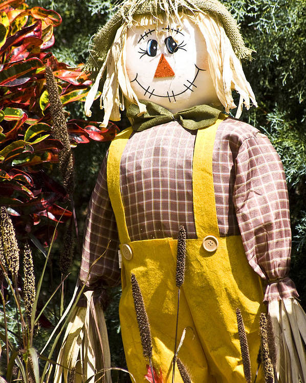 Scarecrow Poster featuring the photograph Scare Crow by Carolyn Marshall