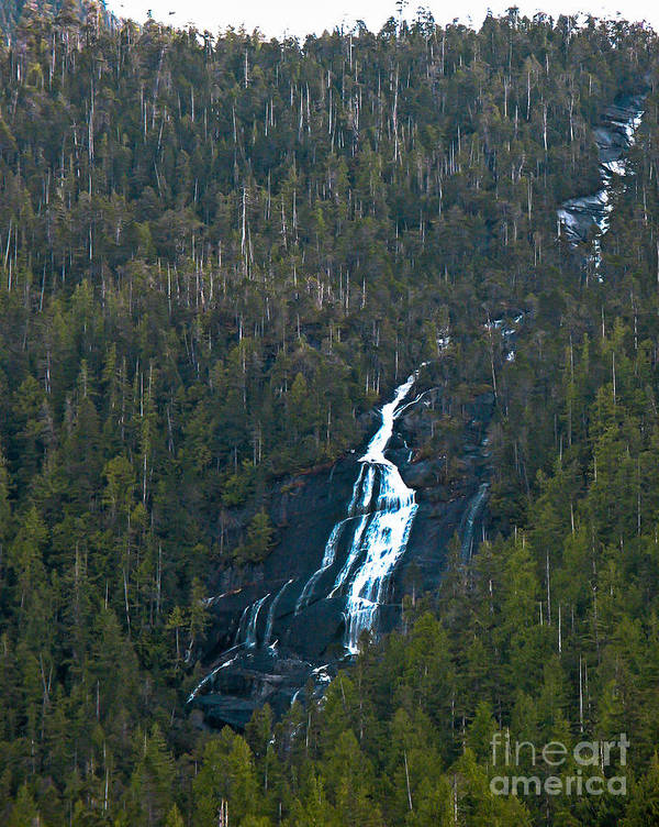 Waterfall Poster featuring the photograph Scenic Waterfall by Robert Bales