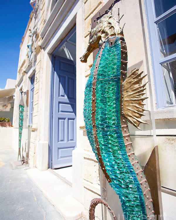 Sea Horse Poster featuring the photograph Seahorse Of Glass by Aiolos Greek Collections