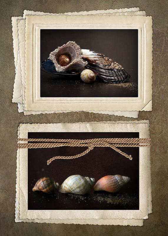 Lisa Knechtel Poster featuring the photograph Seaside Momentos by Lisa Knechtel