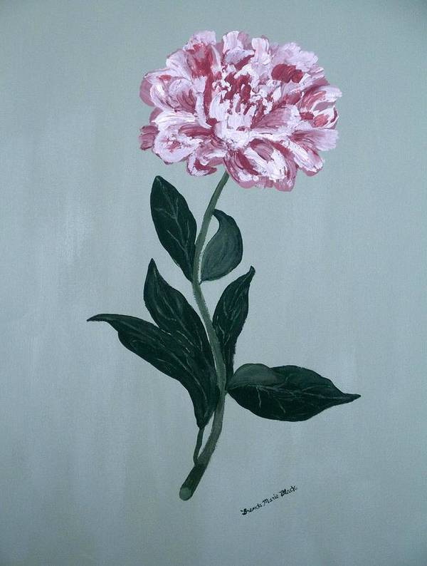 Peony Poster featuring the painting Second Spring Peony by Brenda Marie Black