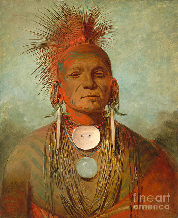 Native; American; Indian; Male; Head; Shoulders; Traditional; Dress; Clothing; Face; Paint; Shaman; Fierce; Proud; Jewellery; Ethnic; Earring; Witch; Doctor; Powerful; Tribal; Tribe; Feathered; Headdress Poster featuring the painting See non ty a an Iowa Medicine Man by George Catlin