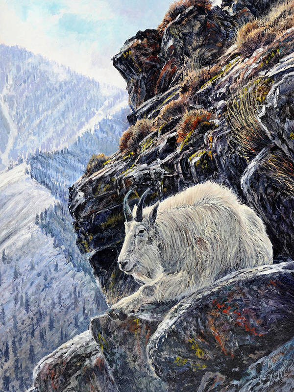 Mountain Goat Poster featuring the painting Sentinel Of The Canyon by Steve Spencer
