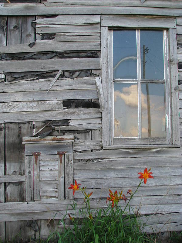 Antique Barn Poster featuring the photograph Shop by Gina Boebel