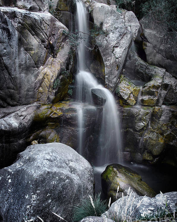 River Poster featuring the photograph Silver Waterfall by Carlos Caetano