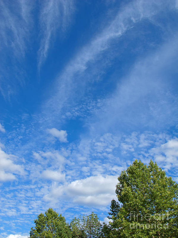 Clouds Poster featuring the photograph Sky Blue Summer Art by Ann Horn