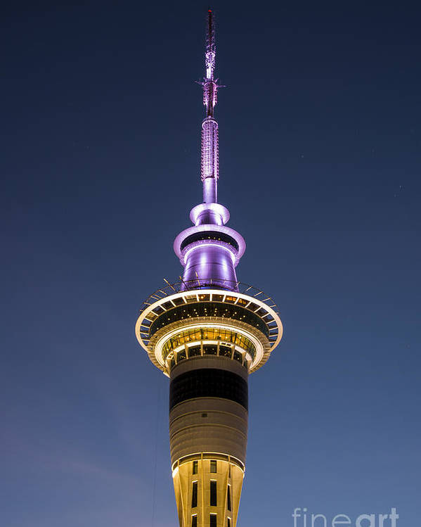 Auckland New Zealand Sky Tower Towers After Dark Architecture Structure Structures Gordon Moller Night Light Lights Poster featuring the photograph Sky Tower by Bob Phillips