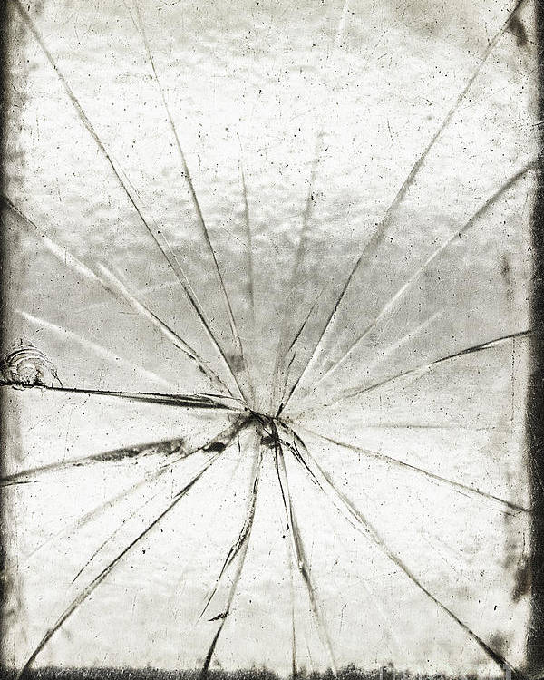 Glass Poster featuring the photograph Smashing by Margie Hurwich
