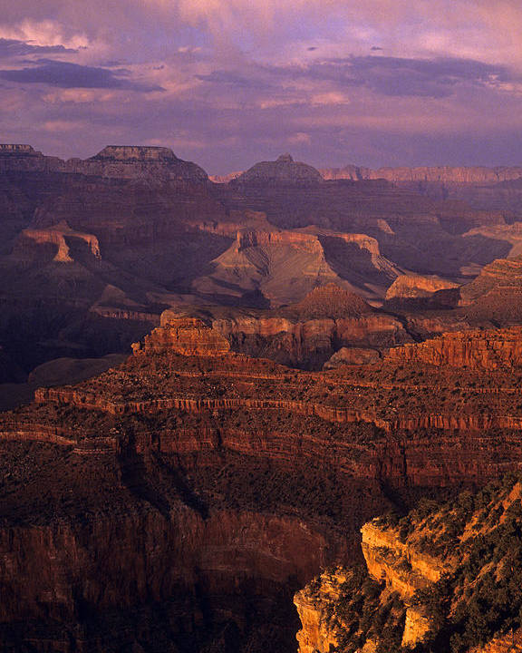 Grand Canyon National Park Poster featuring the photograph South Rim Grand Canyon Taken Near Yavapai Point Sunset Light On by Jim Corwin