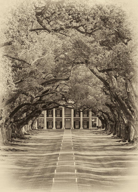 Oak Alley Plantation Poster featuring the photograph Southern Time Travel Sepia by Steve Harrington