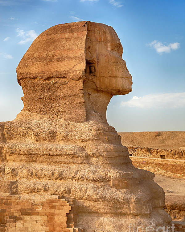 Africa Poster featuring the photograph Sphinx Profile by Jane Rix