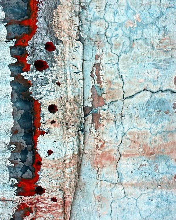 Abstract Poster featuring the photograph Spinal Tap by Marcia Lee Jones