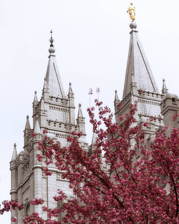 Spring At The Temple Poster featuring the photograph Spring At The Temple by Chad Dutson