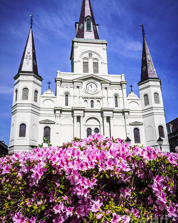 America Poster featuring the photograph St. Louis Cathedral And Flowers In New Orleans by Paul Velgos