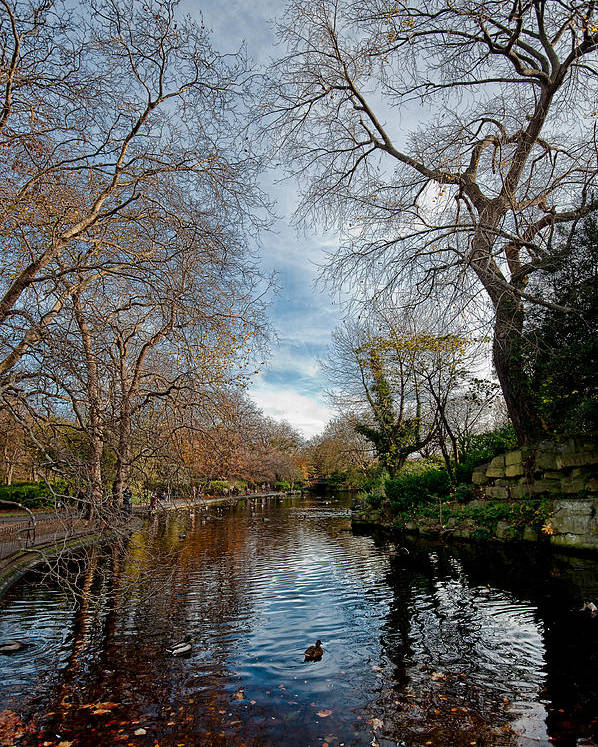 St. Stephens Green Poster featuring the photograph St. Stephens Green Trees by Jason Lanier