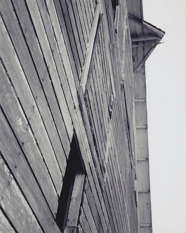 Barn Poster featuring the photograph Standing Proud by Kassie Nelson