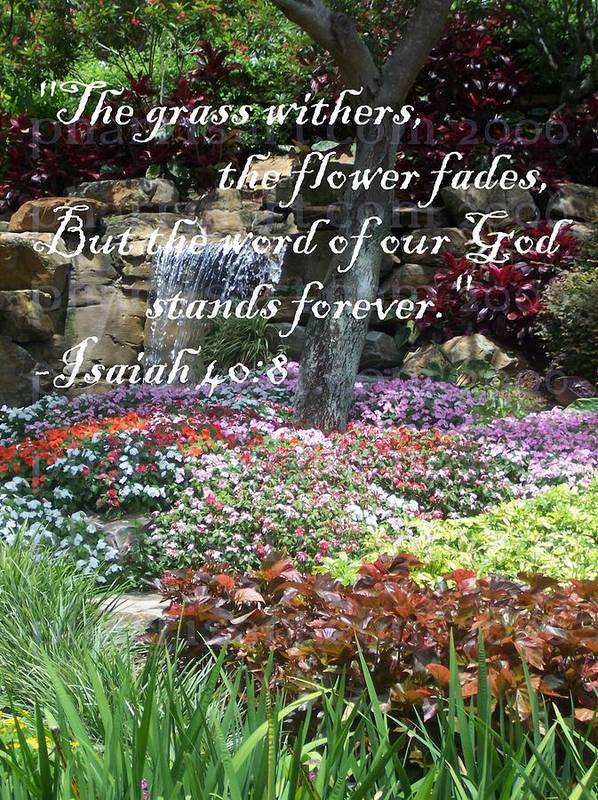 Garden Poster featuring the photograph Stands Forever by Pharris Art