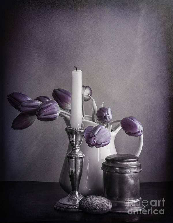Jug Poster featuring the photograph Still Life Study In Purple by Terry Rowe