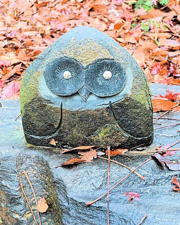 Owl Poster featuring the photograph Stone Owl by James Potts