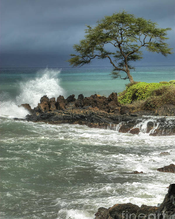 Waterscape Poster featuring the photograph Stormy Maui Morning by Sandra Bronstein