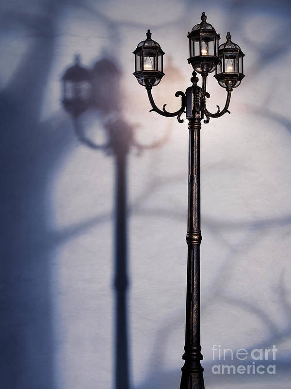 Night Poster featuring the photograph Street Lamp At Night by Oleksiy Maksymenko