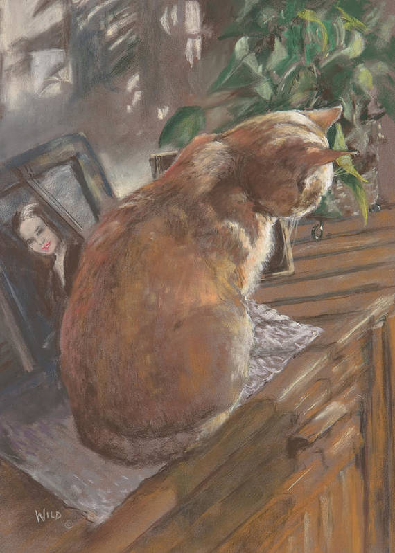 Cat Poster featuring the painting Sun Seeker II by Paula Wild