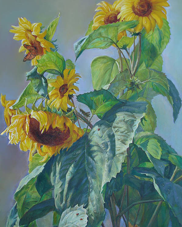 Sunflower Poster featuring the painting Sunflowers After The Rain by Svitozar Nenyuk