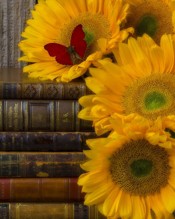 Sunflowers Poster featuring the photograph Sunflowers And Old Books by Garry Gay