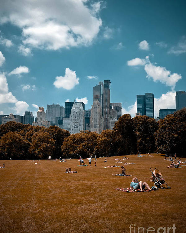 Abstract Poster featuring the photograph Surreal Summer Day In Central Park by Amy Cicconi