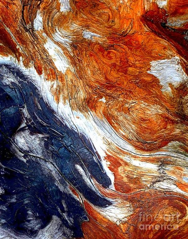 Abstract Poster featuring the photograph Swirl by Lauren Leigh Hunter Fine Art Photography