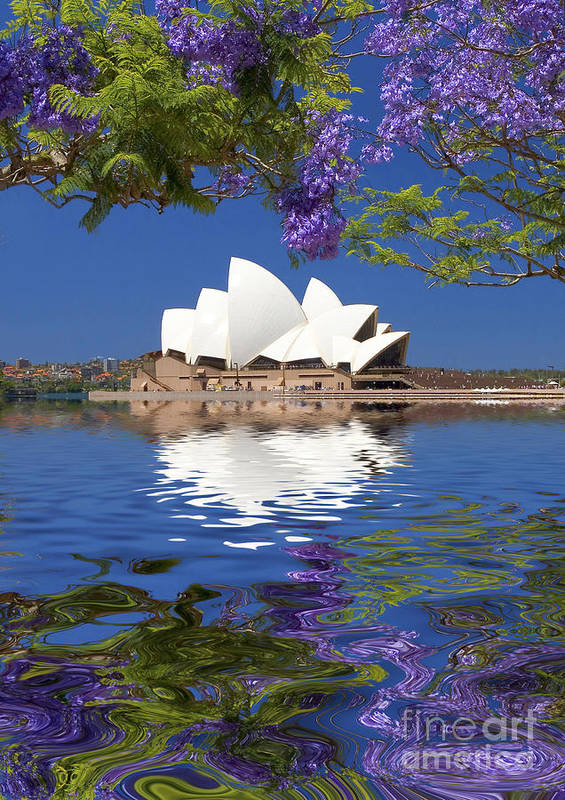 Sydney Opera House Poster featuring the photograph Sydney Opera House with jacaranda reflection by Sheila Smart Fine Art Photography