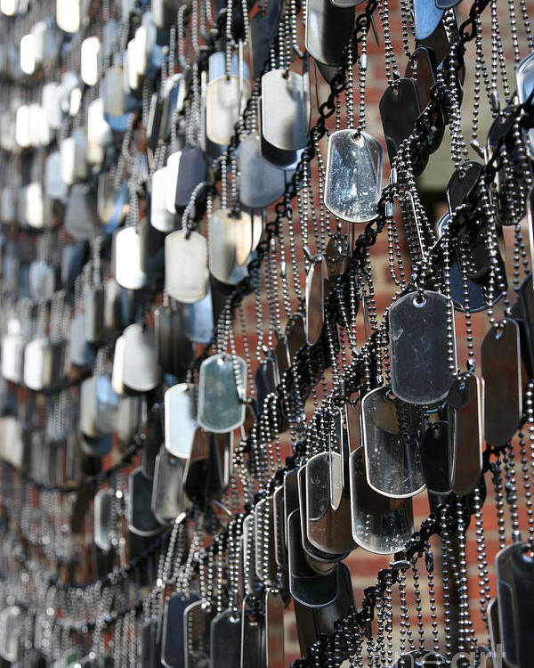 Dog Tag Poster featuring the photograph Tags by DJ Florek