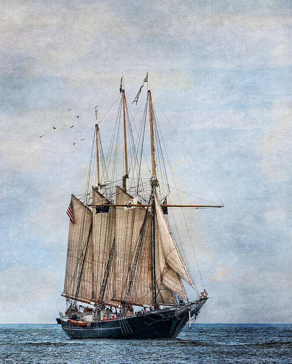 Denis Sullivan Poster featuring the photograph Tall Ship Denis Sullivan by Dale Kincaid