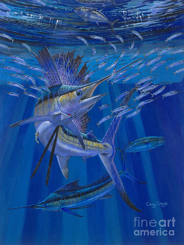 Sailfish Poster featuring the painting Team Work Off0036 by Carey Chen
