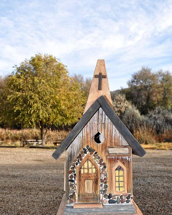 Melba; Idaho; Birdhouse; Shelter; Outdoor; Fall; Autumn; Leaves; Plant; Vegetation; Land; Landscape; Tree; Branch; House; Cross; Poster featuring the photograph The Birdhouse Kingdom - The Western Meadowlark by Image Takers Photography LLC - Carol Haddon