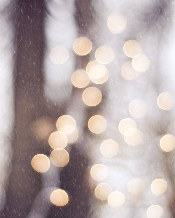 Lights Poster featuring the photograph The Christmas Spirit by Carolyn Cochrane