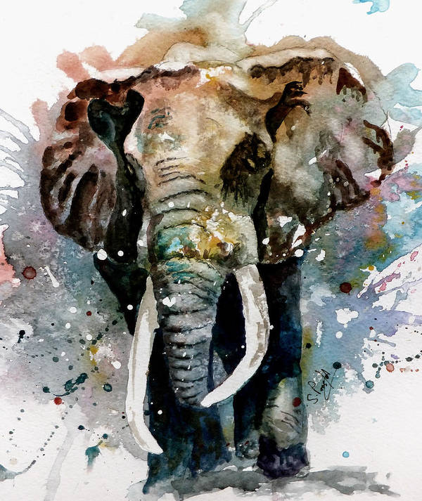 Animals Poster featuring the painting The Elephant by Steven Ponsford