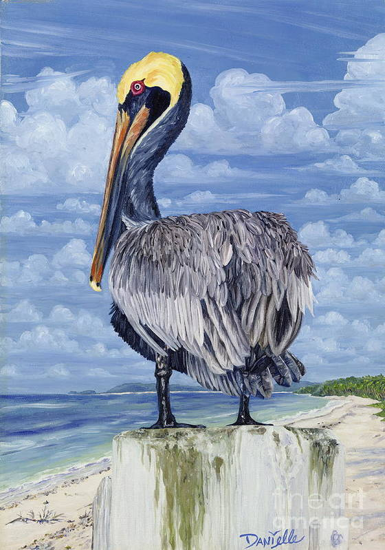 Seascape Poster featuring the painting Pelican Perch by Danielle Perry