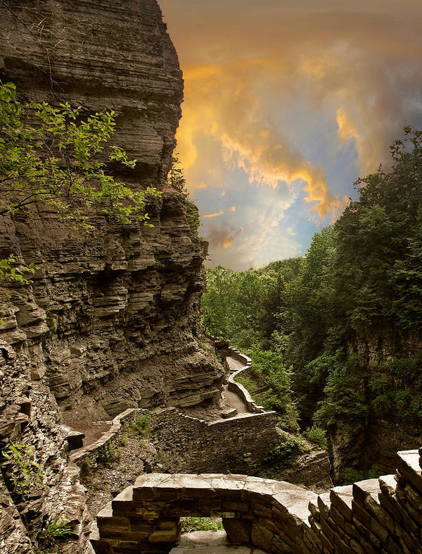 Nature Poster featuring the photograph The Winding Trail by Jessica Jenney