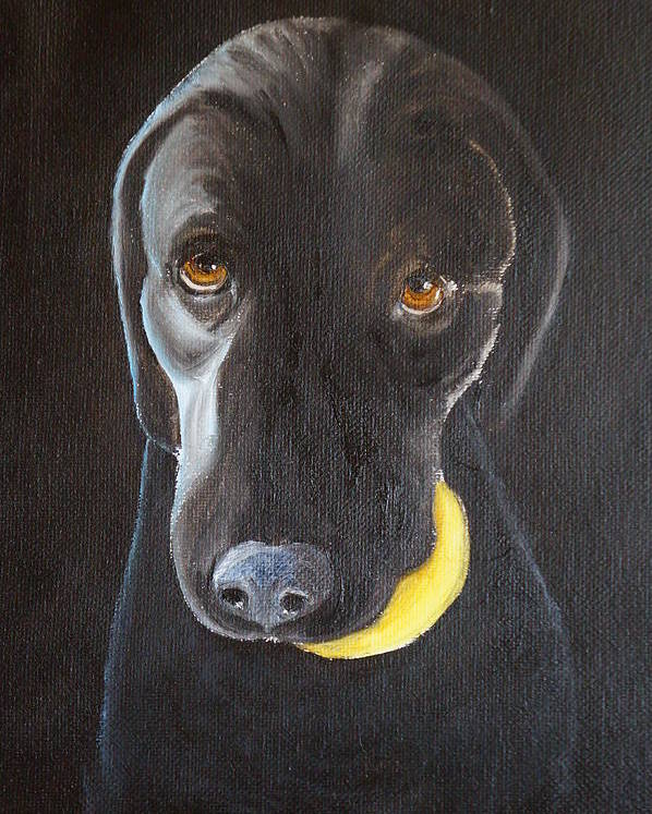 Dog Poster featuring the painting Throw The Ball by Melissa Shumard