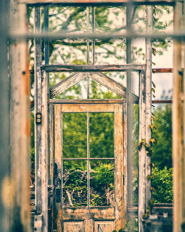 Greenhouse Poster featuring the photograph Thru Times Window by Karol Livote